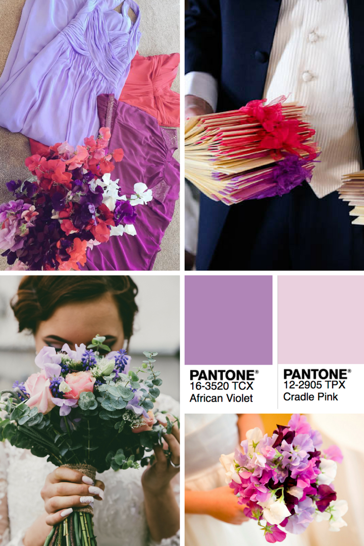 sweet pea wedding colors