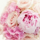 pink peonies and pink roses wedding bouquet