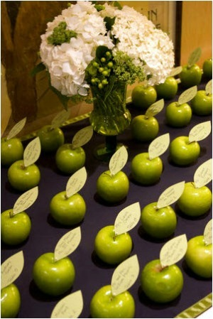 apple place name settings