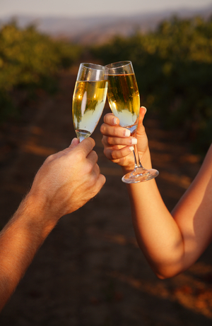 Tips for a Memorable Wedding Toast