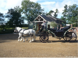 bride and groom outside barn wedding venue with horsedrawn carriage
