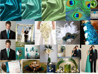 Dazzling Peacock Wedding Colours