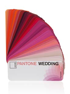 Pantone pms color burgundy in dress