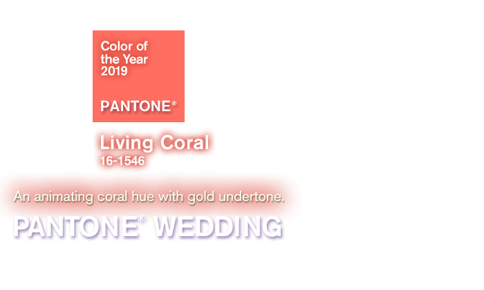 8a8a62843b9 PANTONE WEDDING Color Finder | The Dessy Group